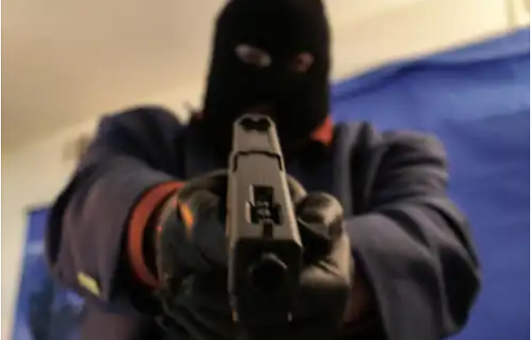 B&B Robbery Near Addo: Guests Shot And Robbed By Balaclava-clad Gang In Eastern Cape